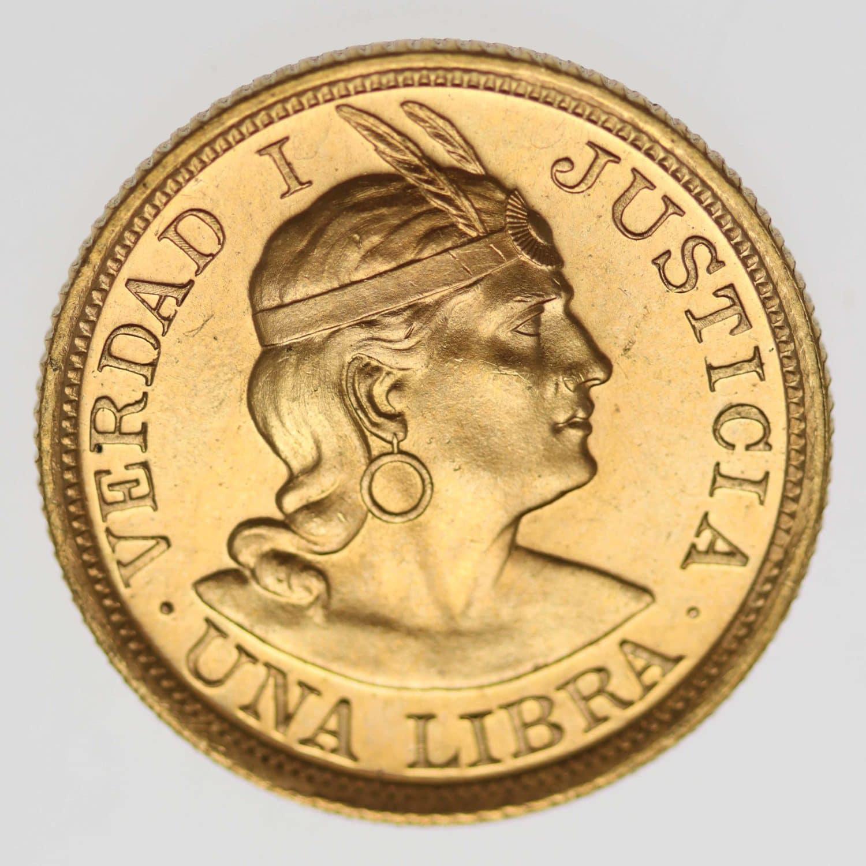 peru - Peru Libra 1969