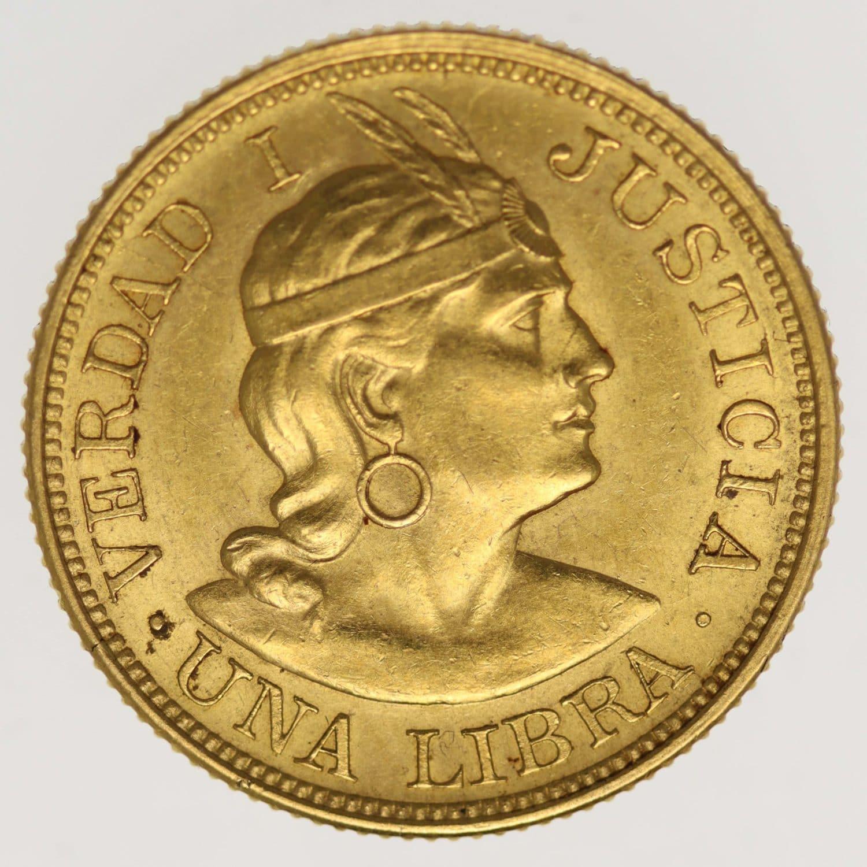 peru - Peru Libra 1898